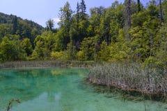 Plitvice湖 免版税库存照片