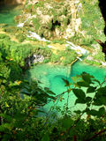 Plitvice Royalty Free Stock Images