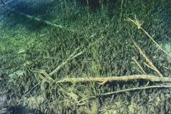 Plitvice湖 免版税图库摄影