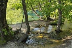 湖plitvice 图库摄影