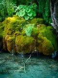 Plitvice,  Croatia  - Moss waterfalls. Plitvice National Park, moss cascade and fish underwater Stock Photo