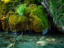 Plitvice,  Croatia  - Moss waterfalls. Plitvice National Park, moss cascade and fish underwater Royalty Free Stock Image