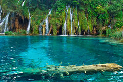 Plitvice Croatia Waterfalls Stock Photos
