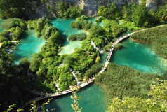 plitvice de stationnement national de lacs de la Croatie Photos libres de droits