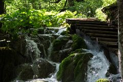 Plitvice jezior park narodowy - ścieżka dla gości Chorwacja zdjęcia royalty free