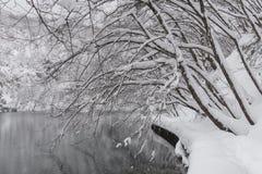 Plitvice jezior park narodowy, śnieg zakrywał naturę Naturalny krajobraz zamarznięty Plitvice jezior park narodowy Obraz Royalty Free