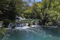 Plitvice jezior park narodowy - Chorwacja Fotografia Stock