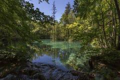 Plitvice jezior park narodowy - Chorwacja Zdjęcia Royalty Free