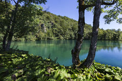 Plitvice jezior park narodowy - Chorwacja Obraz Royalty Free