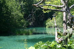 plitvice jeziora. Obraz Royalty Free