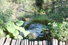 Plitvice jeziora Obraz Royalty Free
