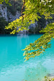 Plitvice jeziora Zdjęcia Royalty Free