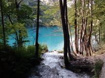 Plitvice jezioro Obraz Royalty Free