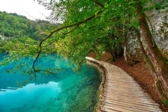 Plitvice Lake Croatia Stock Photography
