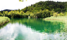 Plitvice Lake Royalty Free Stock Image