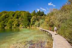 Plitvice lake path Royalty Free Stock Images