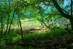 Plitvice lake view (Croatia) through the forest. Plitvice lake view (Croatia) from the forest with lights and shadows Royalty Free Stock Photos