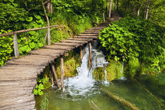 Plitvice lakes royaltyfria foton