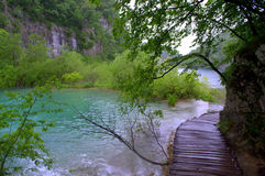 Plitvice lakes boardwalk Royalty Free Stock Image