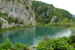 Plitvice lakes in Croatia. One of the Plitvice lakes in Croatia royalty free stock photography