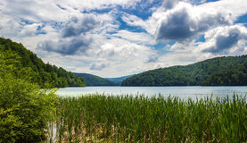 Plitvice lakes in Croatia. Breathtaking view in the Plitvice Lakes National Park (Croatia Royalty Free Stock Images