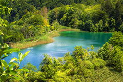Plitvice lakes in Croatia. Breathtaking view in the Plitvice Lakes National Park (Croatia Royalty Free Stock Photo