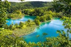 Plitvice lakes in Croatia. National park Plitvice lakes in Croatia Royalty Free Stock Images