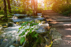Plitvice lakes of Croatia - national park in autumn Stock Photo