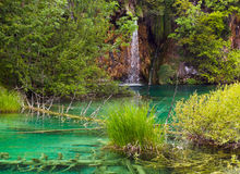 Plitvice lakes in Croatia Royalty Free Stock Photos