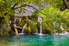 Plitvice lakes in Croatia Royalty Free Stock Images