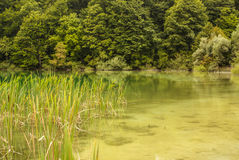 Plitvice lakes in Croatia - nature travel background Stock Photography