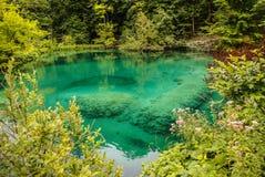 Plitvice lakes in Croatia - nature travel background Royalty Free Stock Photo
