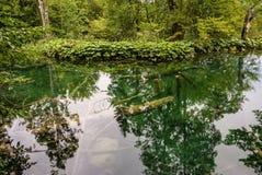 Plitvice lakes in Croatia - nature travel background Royalty Free Stock Image