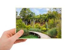 Plitvice lakes (Croatia) photography in hand Stock Photography