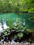 Plitvice Lakes. Croatia´s national park also listed in UNESCO´s World natural heritage. Sixteen lakes are connected by 92 waterfalls in picturesque Royalty Free Stock Photos