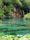 Plitvice Lakes. Croatia´s national park also listed in UNESCO´s World natural heritage. Sixteen lakes are connected by 92 waterfalls in picturesque Royalty Free Stock Image