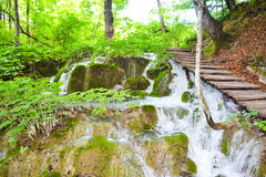 Plitvice lakes in Croatia. Waterfalls a  in Plitvice lakes in Croatia - nature travel background Stock Image