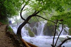 Plitvice lakes falls Croatia Royalty Free Stock Image