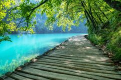 Free Plitvice Lakes In Croatia. National Park In Summer. Waterfalls And Lakes Among The Forest. Footpath For Hiking. Royalty Free Stock Image - 195816776