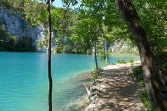 Plitvice lakes national park. Croatia's first National park Plitvice lakes Stock Photography