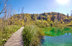 Plitvice lakes national park boardwalk Royalty Free Stock Photos