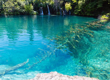 Free Plitvice Lakes National Park, Croatia Royalty Free Stock Photo - 25810175