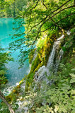 Plitvice Lakes National Park, Croatia Stock Images