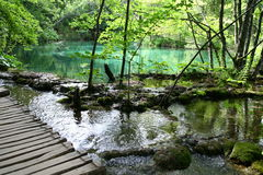 Plitvice Lakes National Park Royalty Free Stock Photo