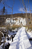 Plitvice lakes. Royalty Free Stock Images