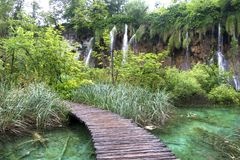 Plitvice Lakes nature wonderland wood path. Plitvice Lakes national park in Croatia nature wonderland with beautiful lakes and waterfalls wood path stock photography