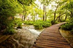 Plitvice lakes park in Croatia Stock Photos