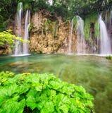 Plitvice lakes park in Croatia Royalty Free Stock Photos