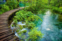 Plitvice lakes park in Croatia Stock Image