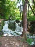 Plitvice Lakes small waterfall. Waterfall on the Plitvice lake royalty free stock image